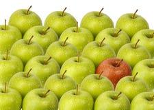 Maçãs verdes com maçã vermelha Imagem de Stock