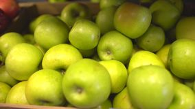 Maçãs verdes frescas maduras na venda nos shelfs do mercado, close up vídeos de arquivo