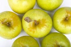 Maçãs verdes isoladas no branco Fotografia de Stock Royalty Free
