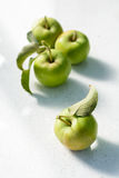 Maçãs verdes verdes com folha Imagem de Stock Royalty Free