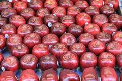 Maçãs vermelhas Fotografia de Stock Royalty Free