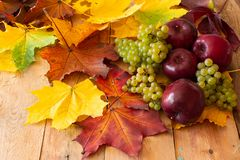 Maçãs vermelhas com uvas verdes fotografia de stock royalty free