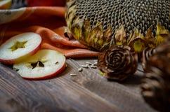 Maçãs vermelhas do outono do vintage no fundo de madeira Fotografia de Stock Royalty Free