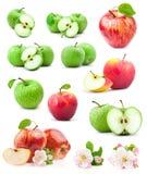 Maçãs vermelhas e verdes Imagem de Stock