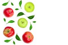 Maçãs vermelhas e verdes decoradas com as folhas verdes isoladas no fundo branco com espaço para seu texto, vista superior da cóp Fotografia de Stock Royalty Free