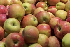 Maçãs vermelhas grandes na loja Muitas maçãs vermelhas na alameda no close up da venda dispararam na imagem natural da cor Alimen Fotografia de Stock Royalty Free