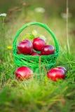 Maçãs vermelhas na cesta Foto de Stock