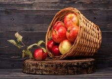 Maçãs vermelhas na cesta velha Imagem de Stock Royalty Free