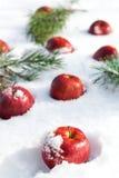 Maçãs vermelhas na neve branca foto de stock royalty free