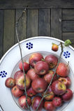 Maçãs vermelhas orgânicas Foto de Stock