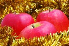 Maçãs vermelhas suculentas do Natal Imagem de Stock Royalty Free