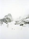 Mán tiempo en montañas: una tormenta de la nieve y una niebla. imagen de archivo