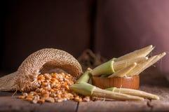 Maíz de semilla y maíz de bebé en fondo de madera de la tabla Foto de archivo