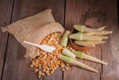 Maíz de semilla y maíz de bebé en fondo de madera de la tabla Imagen de archivo