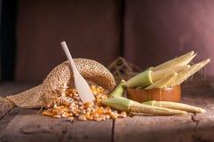 Maíz de semilla y maíz de bebé en fondo de madera de la tabla Imágenes de archivo libres de regalías