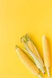 Maíz en mazorcas en copyspace amarillo de la opinión superior del fondo Imagenes de archivo