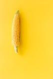 Maíz en mazorcas en copyspace amarillo de la opinión superior del fondo Fotografía de archivo libre de regalías