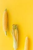 Maíz en mazorcas en copyspace amarillo de la opinión superior del fondo Foto de archivo libre de regalías