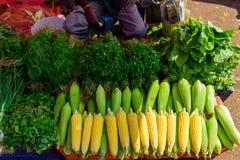 Maíz maduro en descensos del agua y de una variedad de primer de los verdes Mercado vegetal del granjero local en Asia Contador c imagenes de archivo
