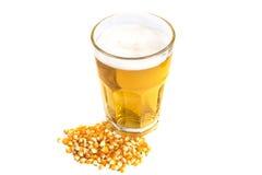 Maíz secado con la pinta de cerveza aislada Fotografía de archivo