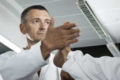 Maître d'arts martiaux images libres de droits