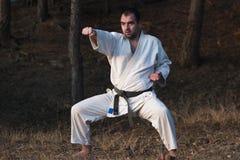Maître d'arts martiaux photos stock
