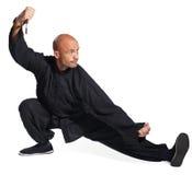 Maître de tai-chi Image libre de droits