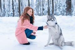Maître femelle sur la formation de chien avec le chien de traîneau sibérien Images libres de droits