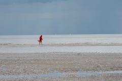 Maître nageur sur la plage Photos libres de droits