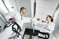 Maîtres d'arts martiaux image libre de droits