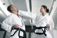 Maîtres d'arts martiaux photo stock