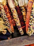 Maïs à vendre Photographie stock