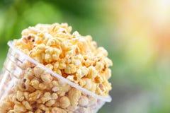 Maïs éclaté en sel doux de maïs éclaté de beurre de backgroubd de tasse et de vert et de lumière du soleil de nature images stock