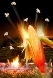 Maïs éclaté sautant au-dessus de l'incendie Image stock