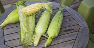 Maïs écossé frais Images stock