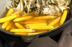 Maïs Image stock