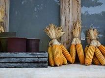 Maïs artificiel Photos libres de droits