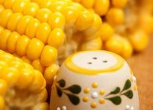 Maïs avec du sel Photographie stock