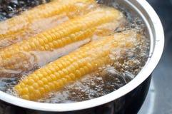 Maïs bouillant dans le bac Images stock