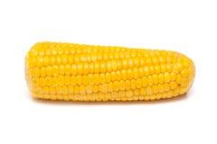 Maïs bouilli Photos stock