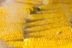 Maïs bouilli sur un épi en eau chaude chez Oktoberfest Photographie stock