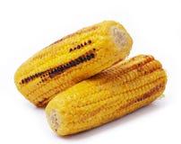 Maïs délicieux Image libre de droits