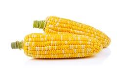 Maïs d'isolement sur un fond blanc Photographie stock libre de droits
