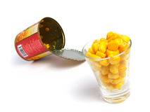 Maïs dans une glace de projectile Images libres de droits