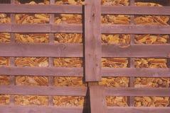 Maïs dans une poubelle d'alimentation dans Catskills, NY Images stock