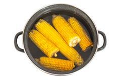 Maïs de ébullition dans le pot Photo libre de droits