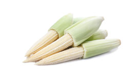 Maïs de chéri Photographie stock