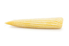Maïs de chéri Images stock