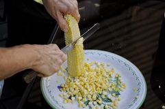 Maïs de coupe de l'épi photographie stock