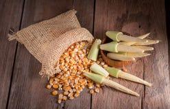 Maïs de graine et maïs de bébé sur le fond en bois de table Image stock